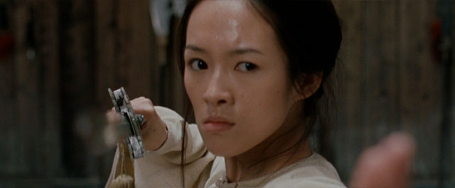 Zhang Ziyi in Crouching Tiger, Hidden Dragon